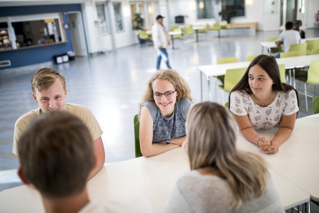 Bild på elever på Birger Sjöberggymnasiet